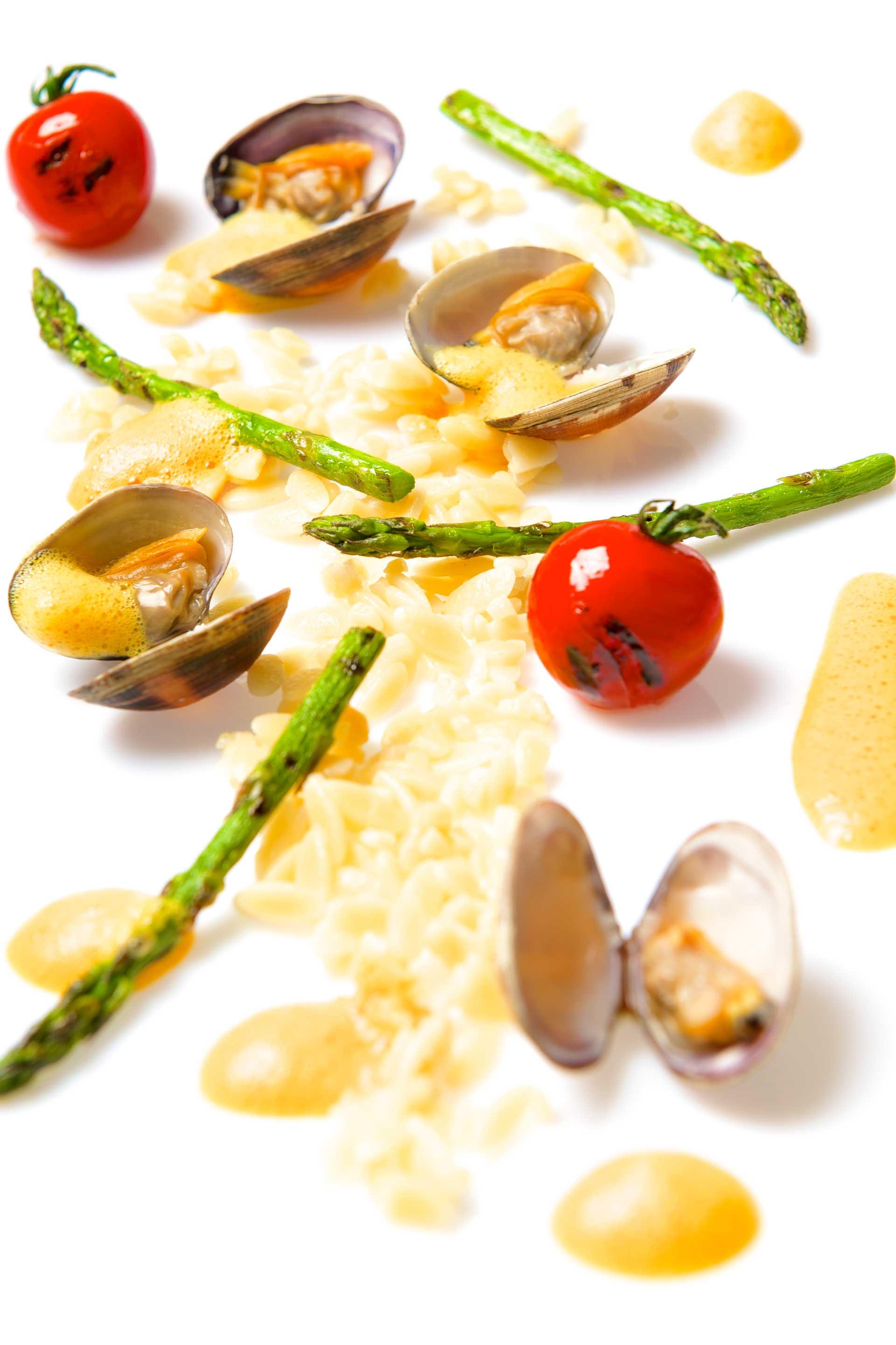pasta-schelp